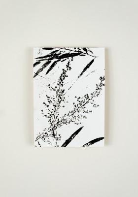 Papier décoratif - Naturologie