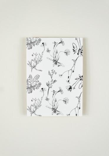 Papier décoratif - Fleurs sauvages