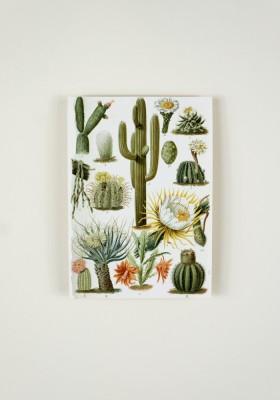Papier décoratif - Tulum